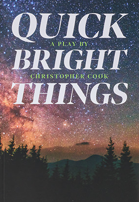 Book cover for Quick Bright Things by Christopher Cook