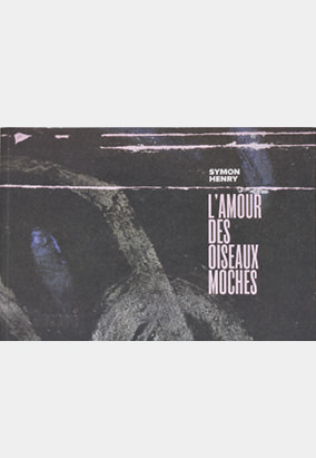 Book cover for L'amour des oiseaux moches by Symon Henry