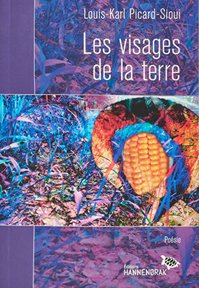Book cover for Les visages de la terre by Louis-Karl Picard-Sioui
