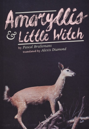 Book cover for Amaryllis & Little Witch, translated by Alexis Diamond